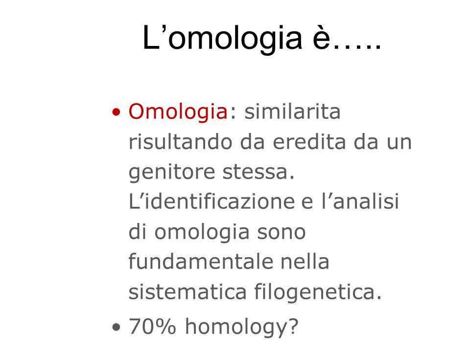 L'omologia è…..