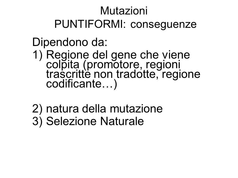 Mutazioni PUNTIFORMI: conseguenze