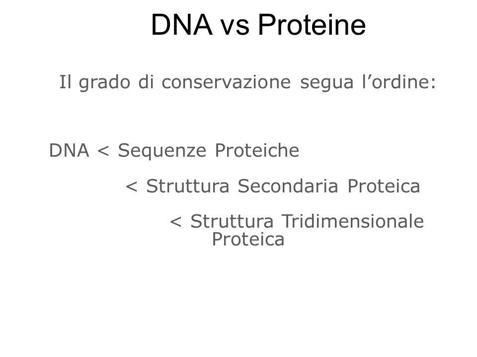 DNA vs Proteine Il grado di conservazione segua l'ordine: