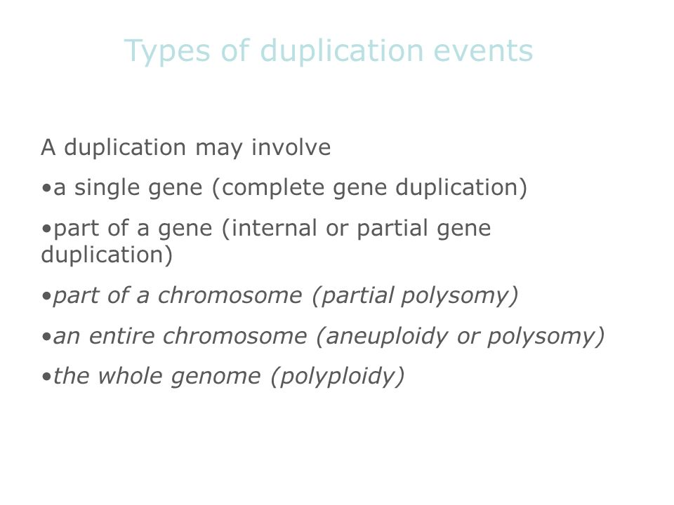 Types of duplication events