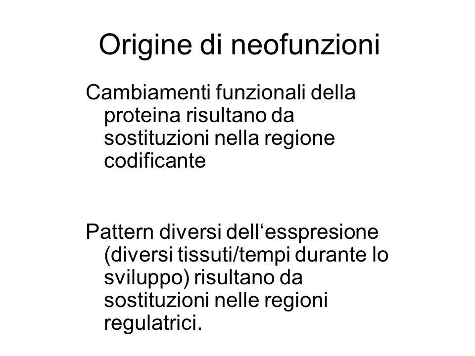 Origine di neofunzioni