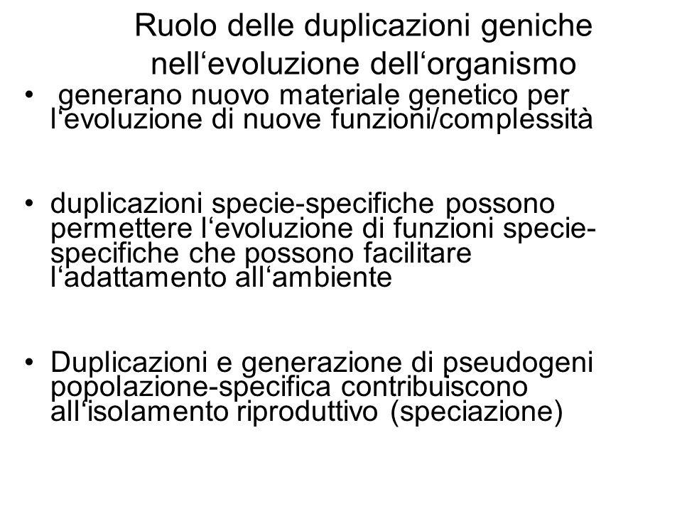 Ruolo delle duplicazioni geniche nell'evoluzione dell'organismo