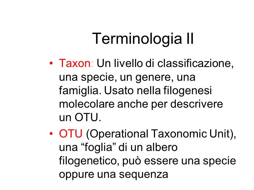 Terminologia II