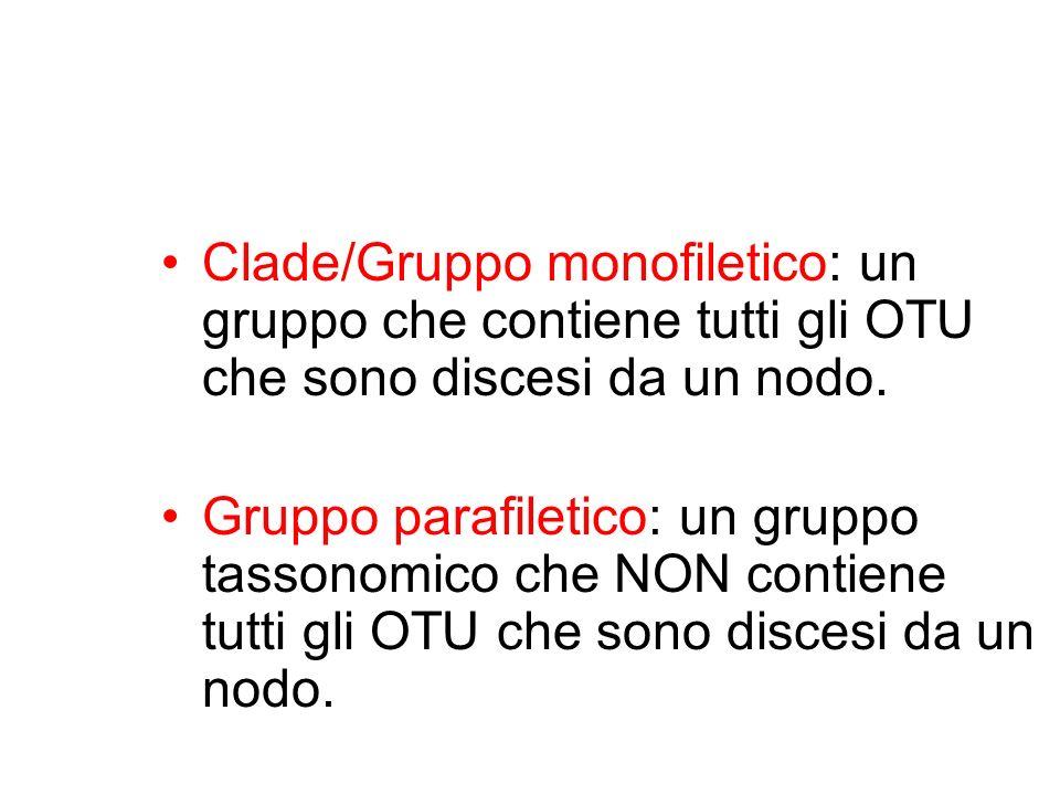 Clade/Gruppo monofiletico: un gruppo che contiene tutti gli OTU che sono discesi da un nodo.