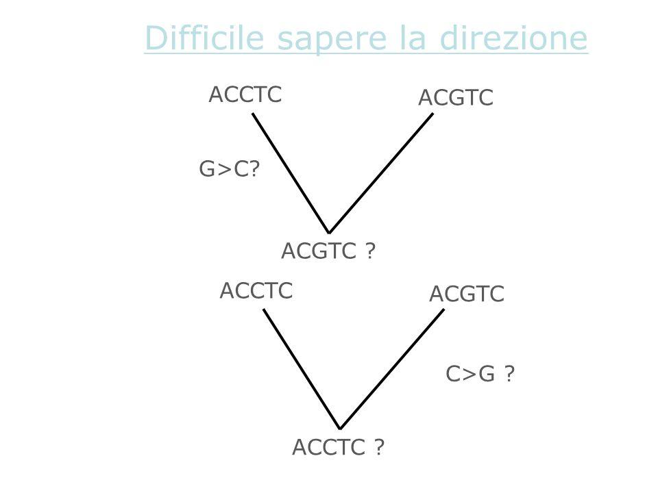 Difficile sapere la direzione