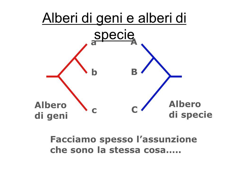 Alberi di geni e alberi di specie