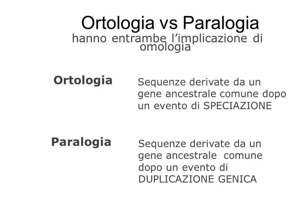 Ortologia vs Paralogia