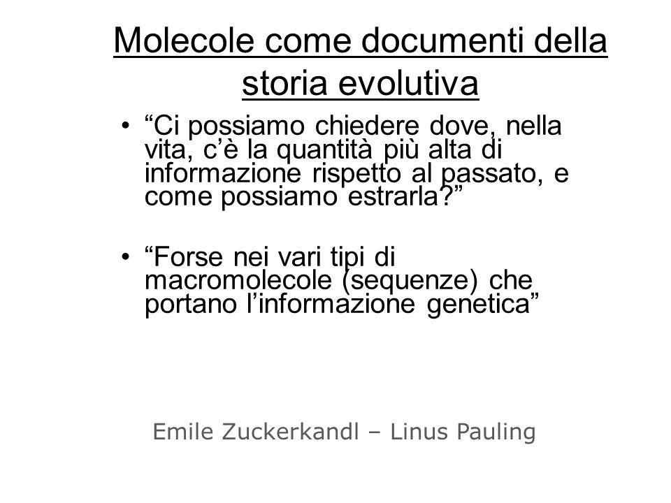 Molecole come documenti della storia evolutiva