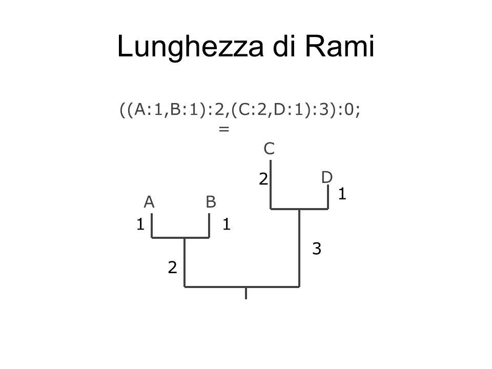 Lunghezza di Rami ((A:1,B:1):2,(C:2,D:1):3):0; = C 2 D 1 A B 1 1 3 2