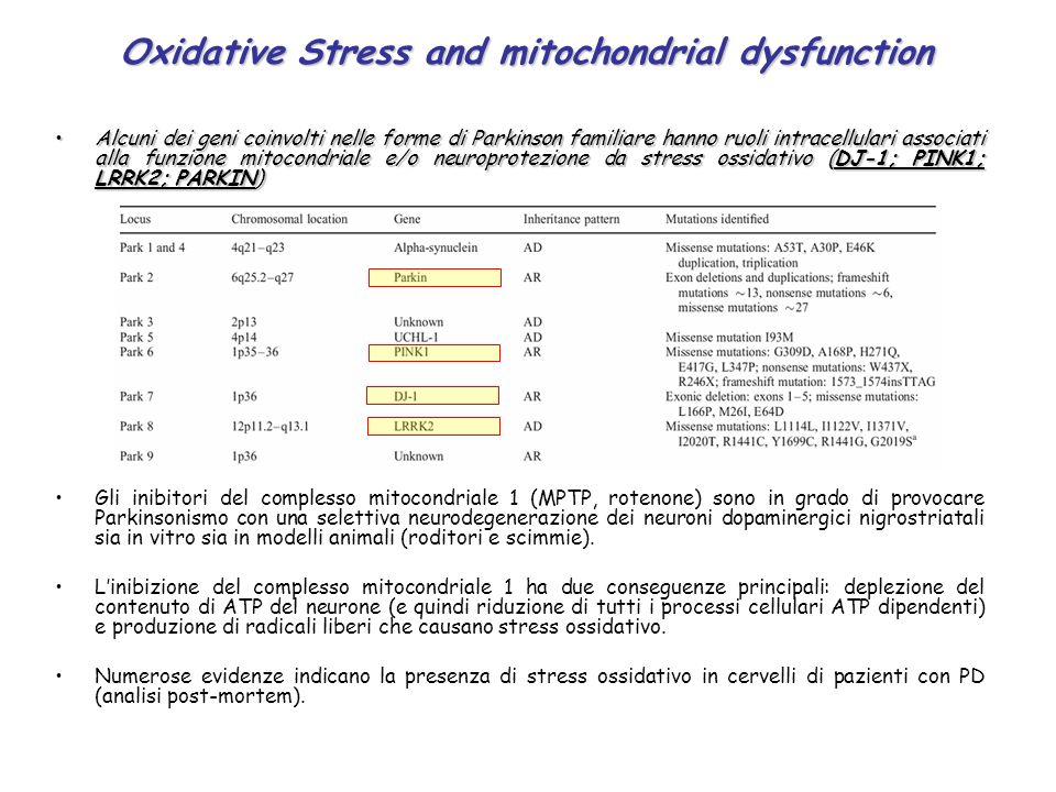 Oxidative Stress and mitochondrial dysfunction