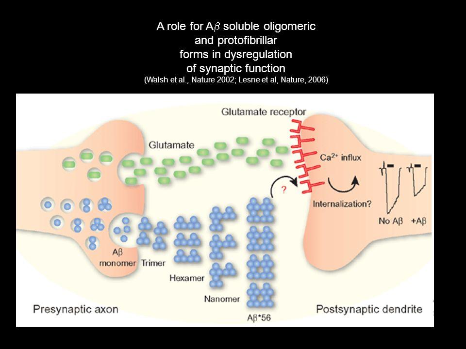 A role for Ab soluble oligomeric and protofibrillar