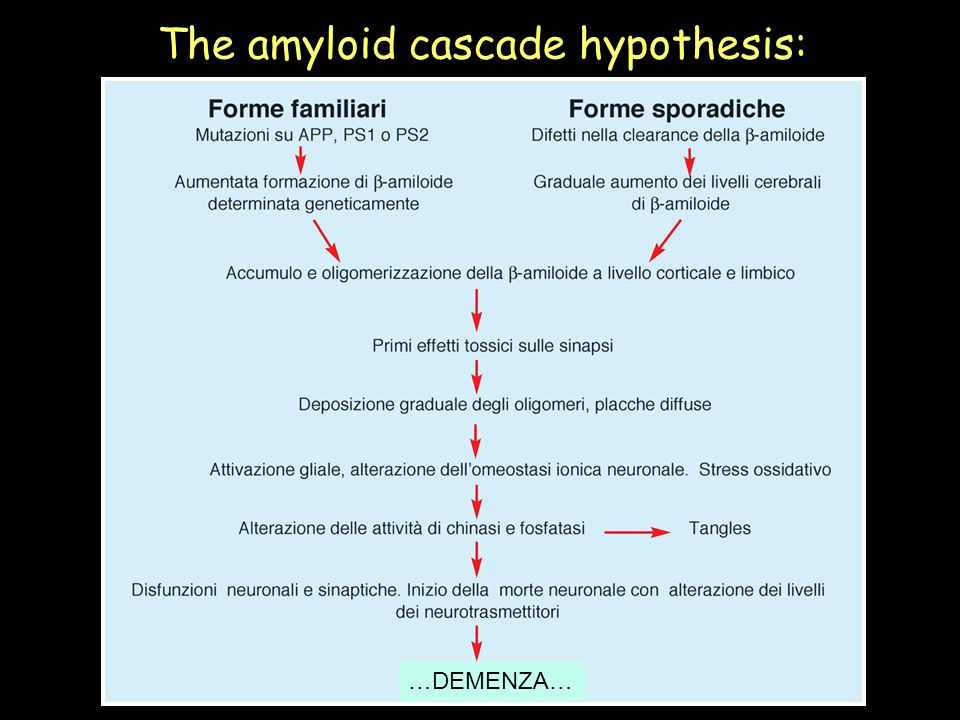 The amyloid cascade hypothesis: