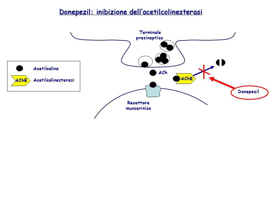 Donepezil: inibizione dell'acetilcolinesterasi