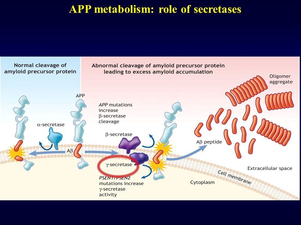 APP metabolism: role of secretases