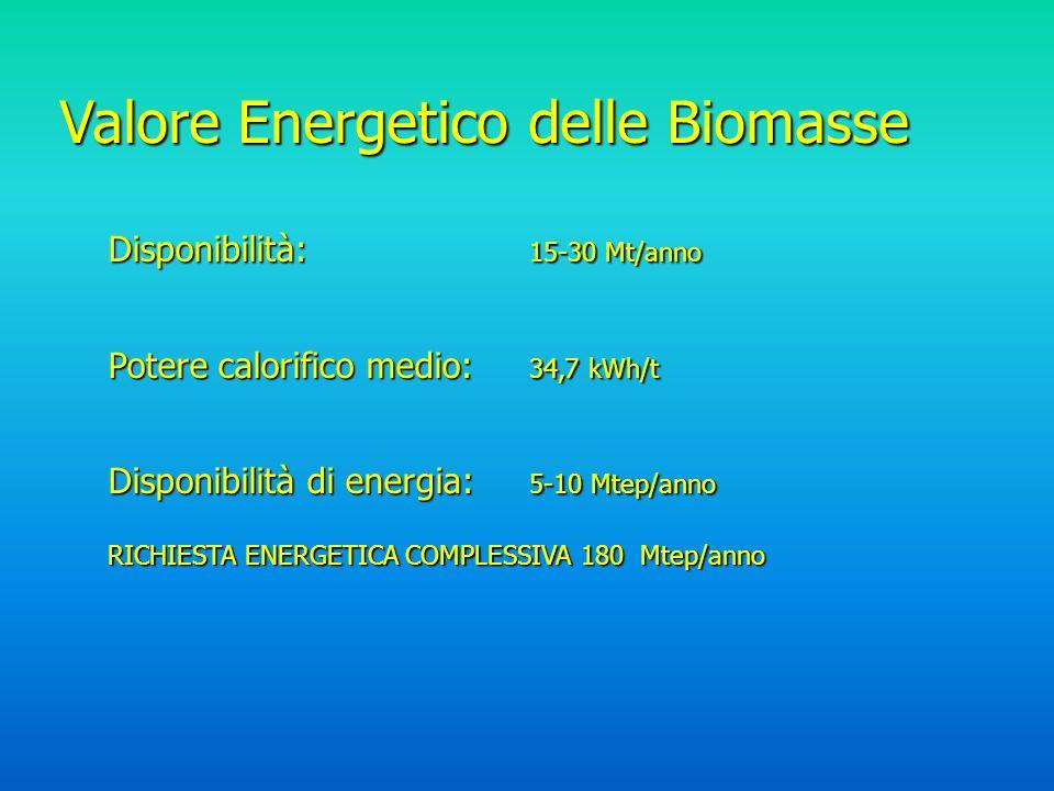 Valore Energetico delle Biomasse