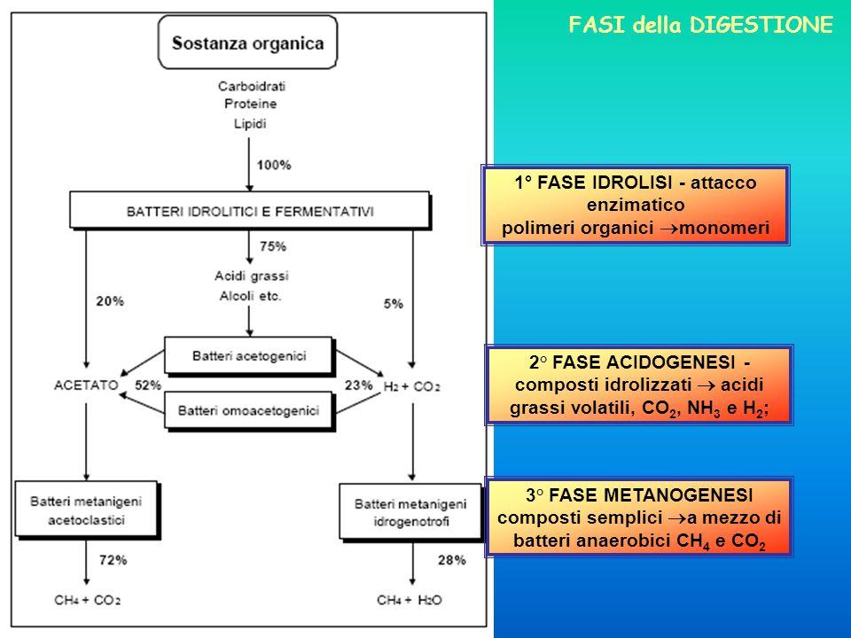 1° FASE IDROLISI - attacco enzimatico polimeri organici monomeri