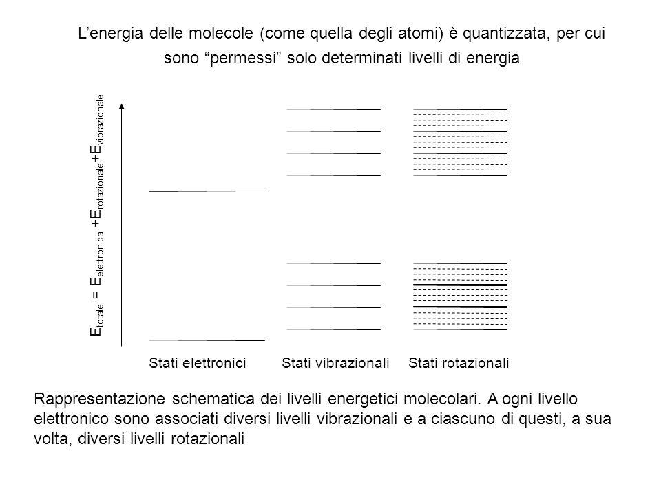 L'energia delle molecole (come quella degli atomi) è quantizzata, per cui sono permessi solo determinati livelli di energia