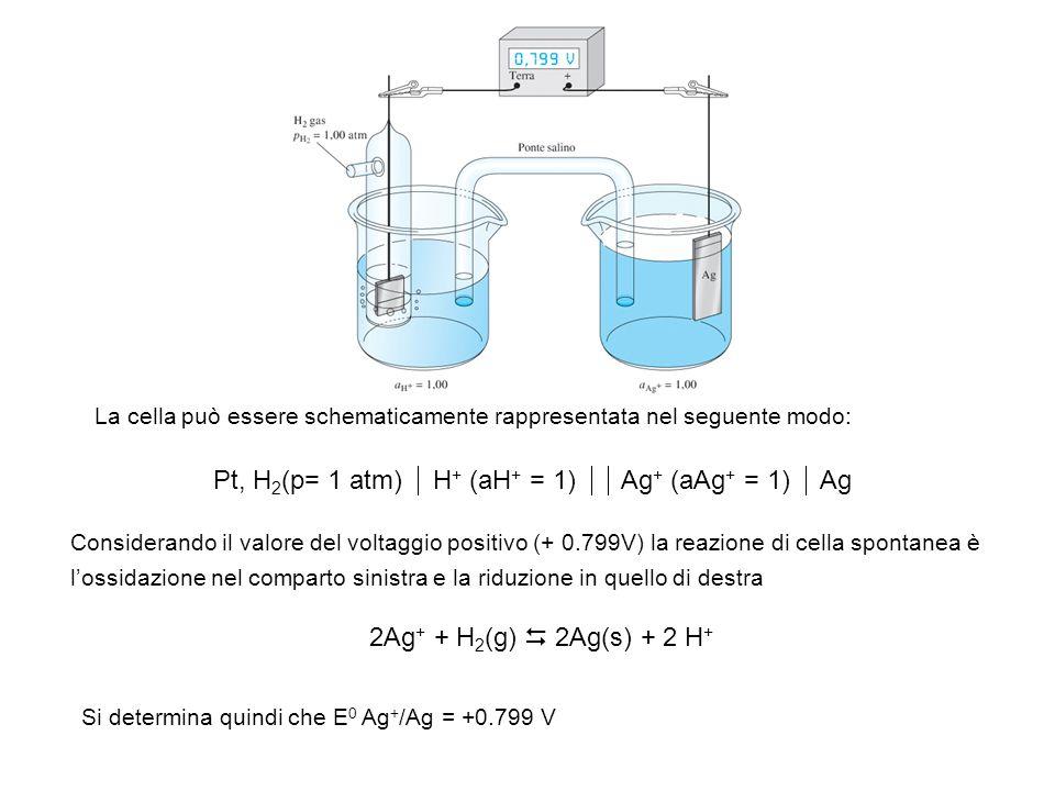 Pt, H2(p= 1 atm)  H+ (aH+ = 1)  Ag+ (aAg+ = 1)  Ag