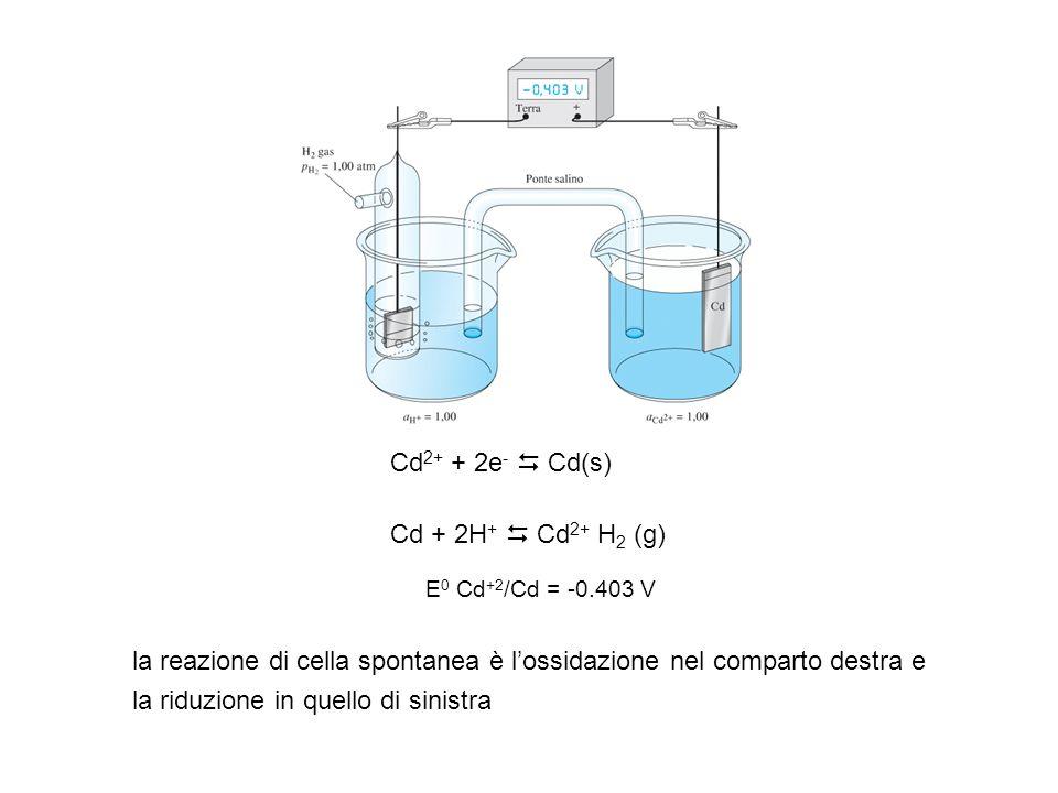 la reazione di cella spontanea è l'ossidazione nel comparto destra e