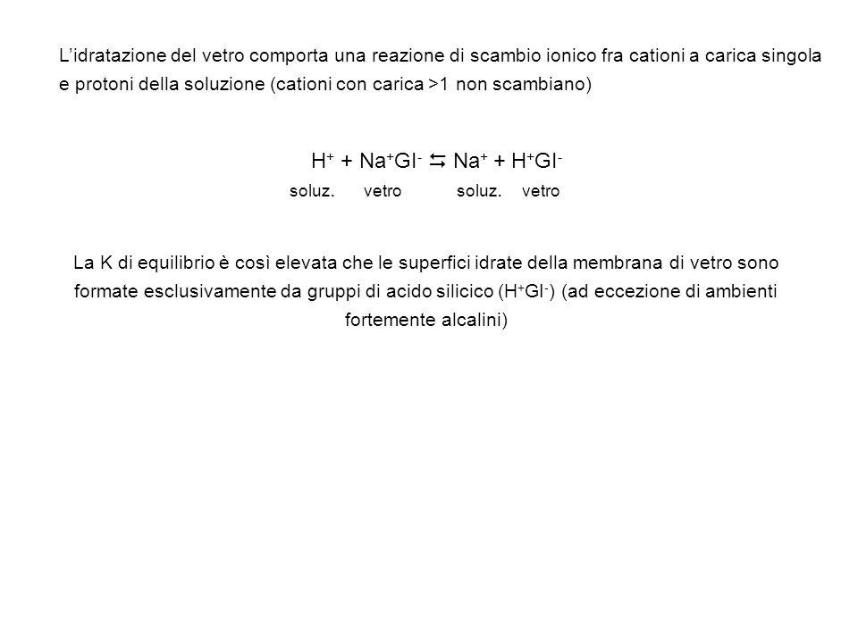 L'idratazione del vetro comporta una reazione di scambio ionico fra cationi a carica singola e protoni della soluzione (cationi con carica >1 non scambiano)