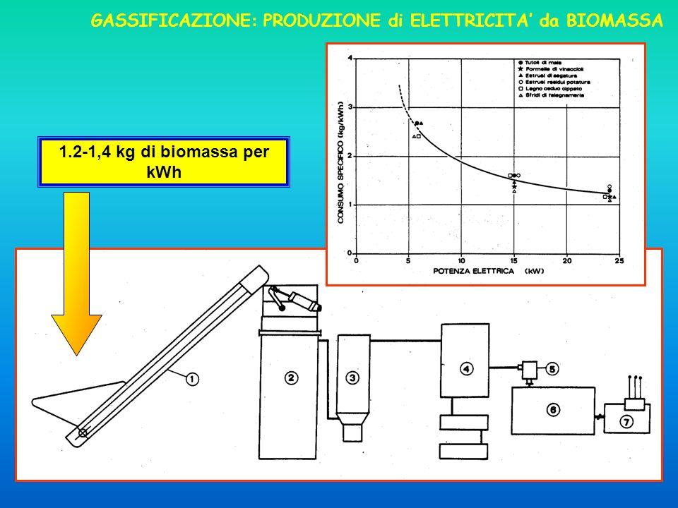 GASSIFICAZIONE: PRODUZIONE di ELETTRICITA' da BIOMASSA