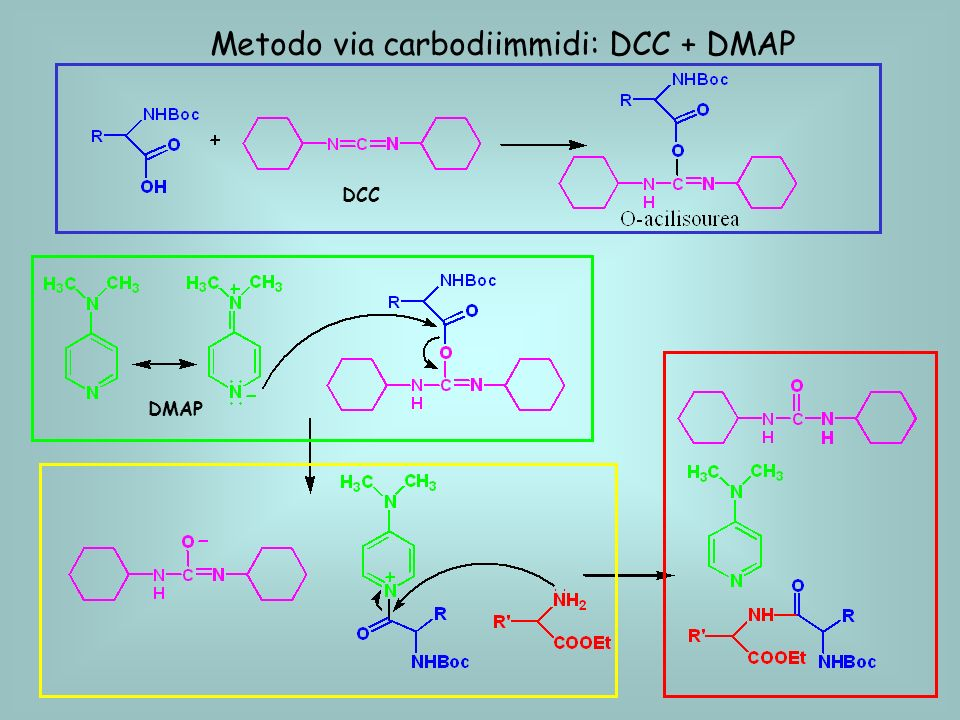 Metodo via carbodiimmidi: DCC + DMAP