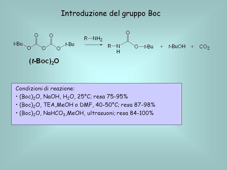 Introduzione del gruppo Boc