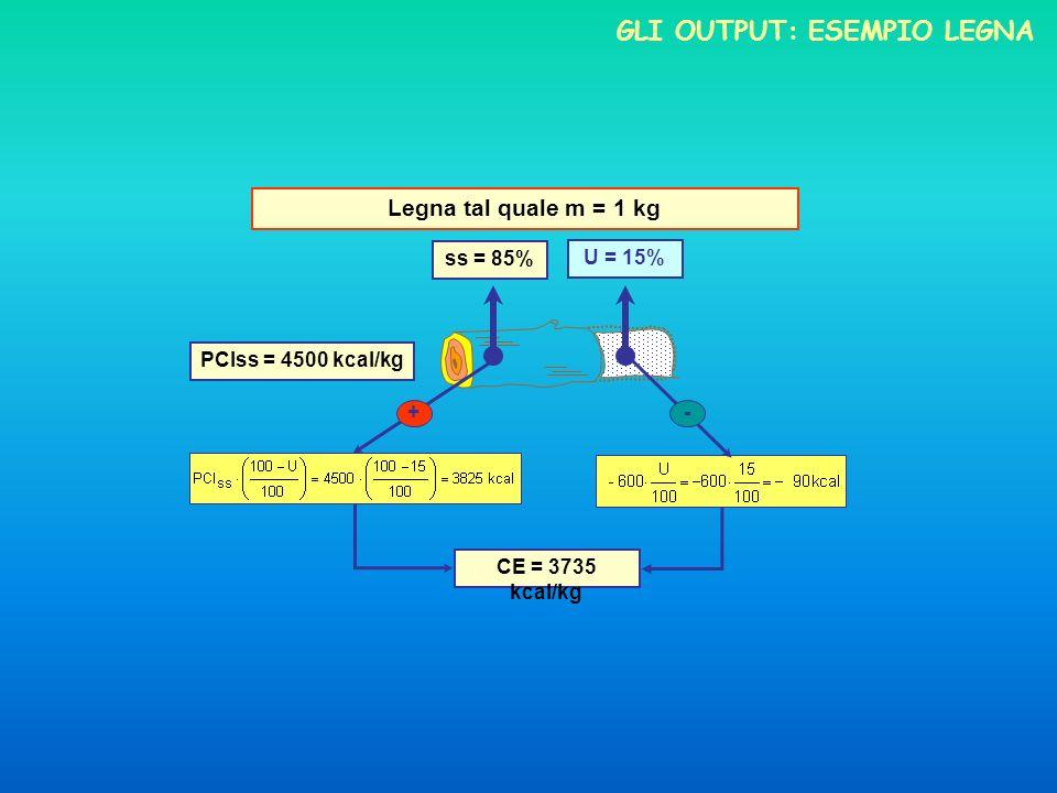 Gli output: esempio legna