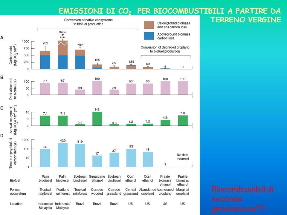 Biocombustibili di seconda generazione