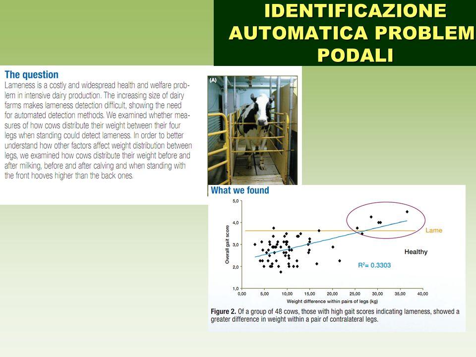 IDENTIFICAZIONE AUTOMATICA PROBLEMI PODALI