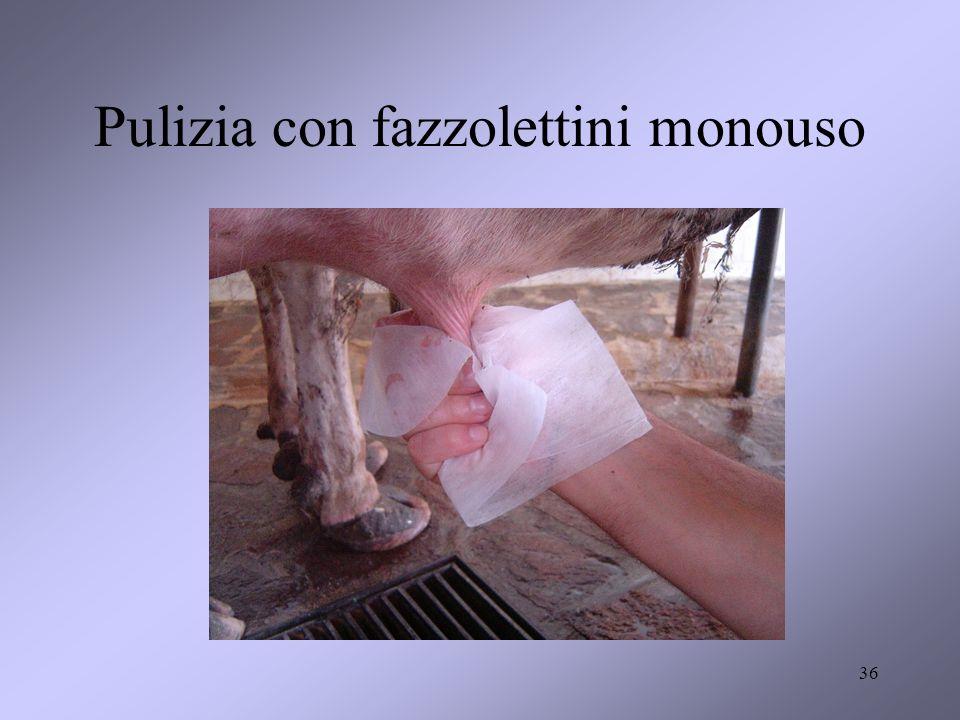Pulizia con fazzolettini monouso