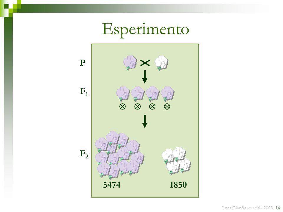 Esperimento 5474 1850 P F1 F2 Luca Gianfranceschi - 2008