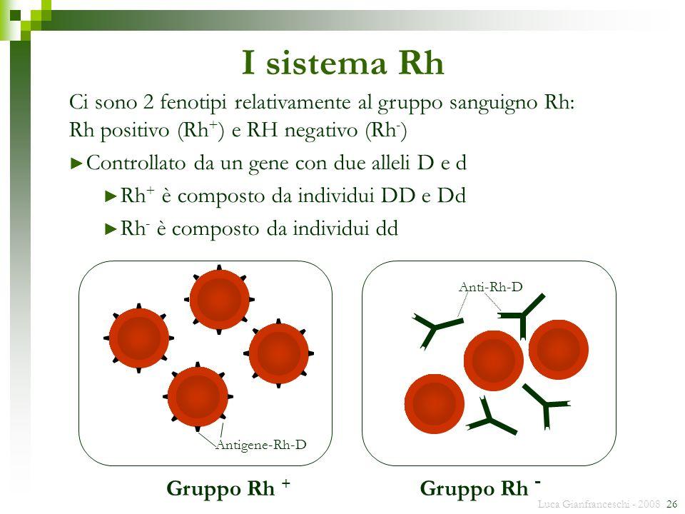 I sistema Rh Ci sono 2 fenotipi relativamente al gruppo sanguigno Rh: Rh positivo (Rh+) e RH negativo (Rh-)