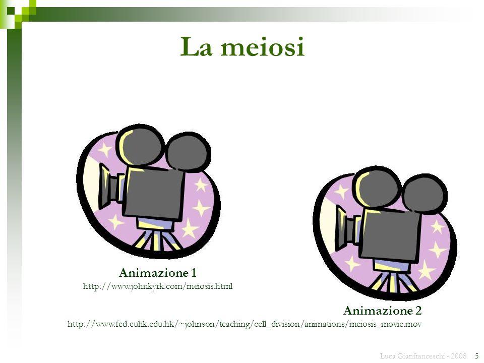 La meiosi Animazione 1 Animazione 2