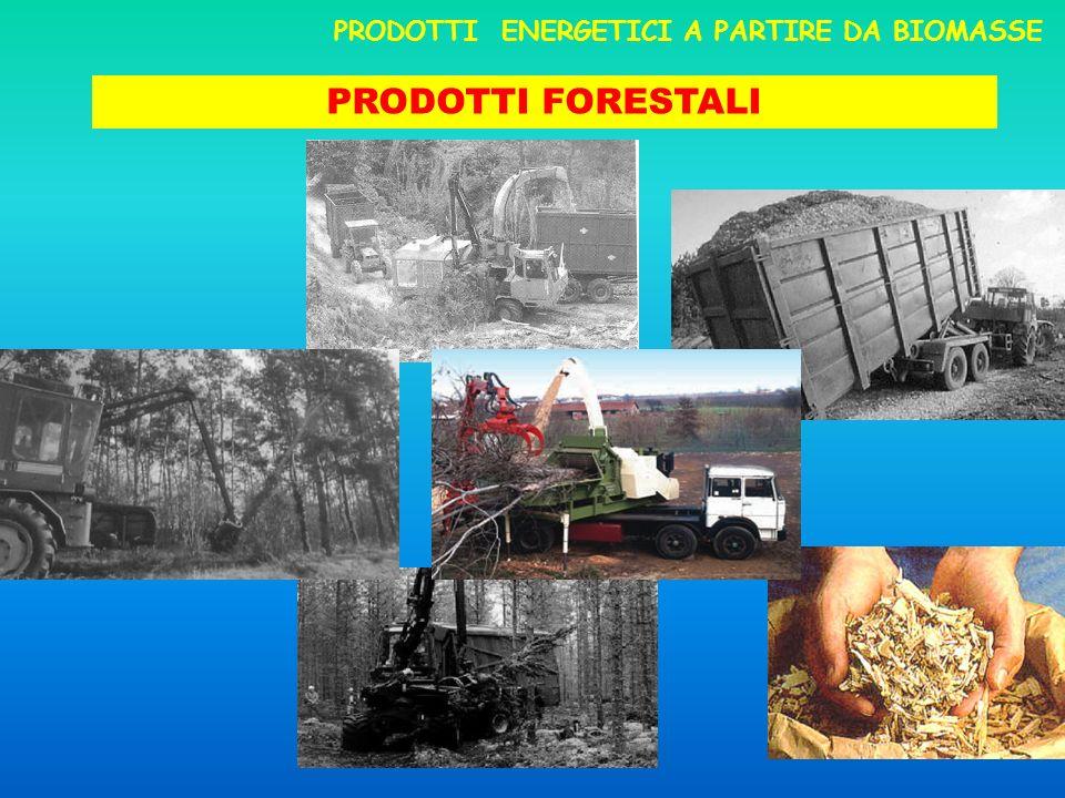 PRODOTTI ENERGETICI A PARTIRE DA BIOMASSE