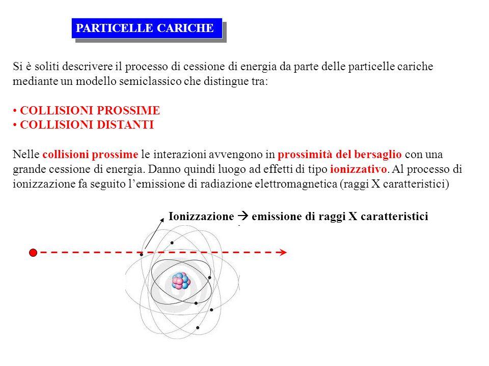 PARTICELLE CARICHE
