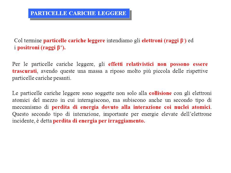 PARTICELLE CARICHE LEGGERE