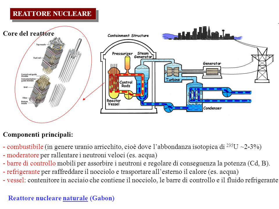 REATTORE NUCLEARE Core del reattore. Componenti principali: