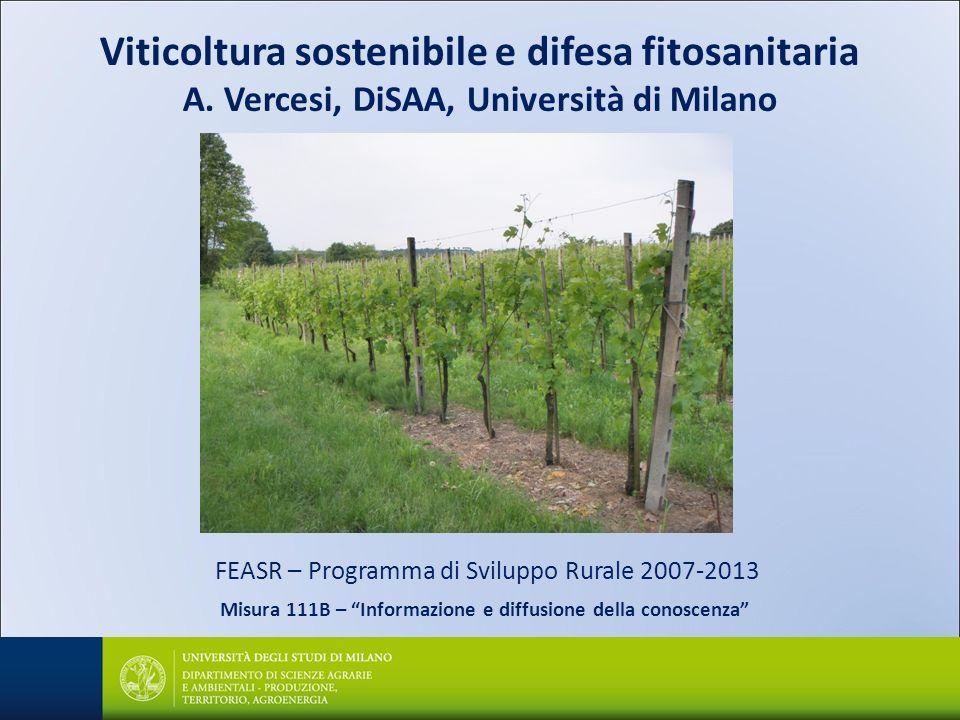 Viticoltura sostenibile e difesa fitosanitaria