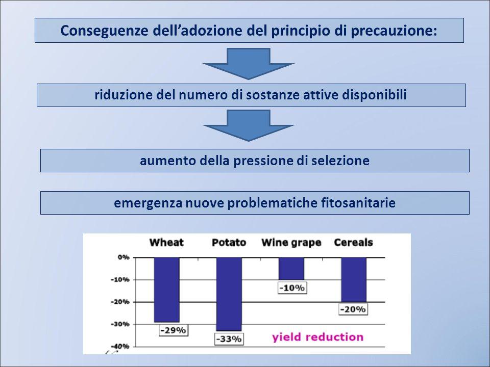 Conseguenze dell'adozione del principio di precauzione: