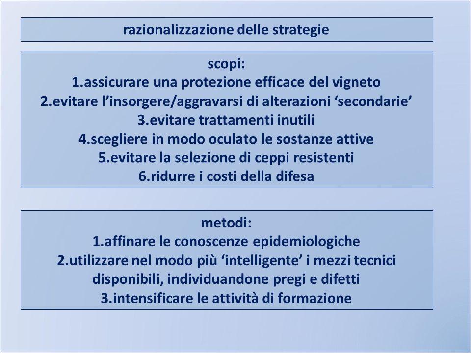 razionalizzazione delle strategie
