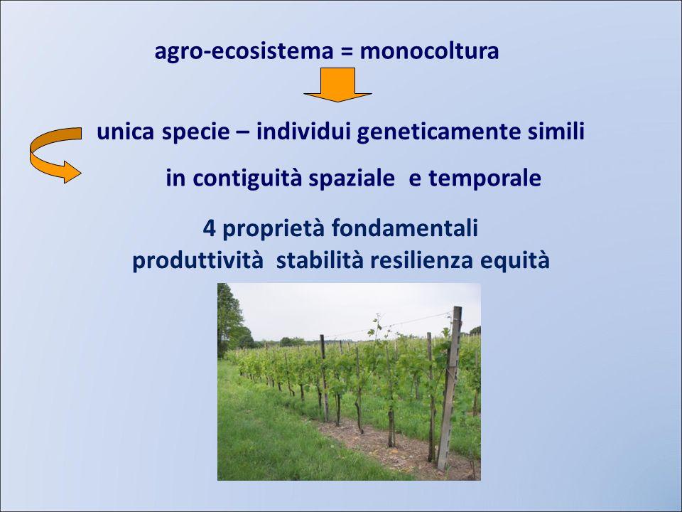agro-ecosistema = monocoltura