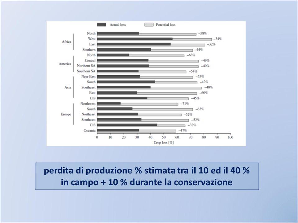 perdita di produzione % stimata tra il 10 ed il 40 %