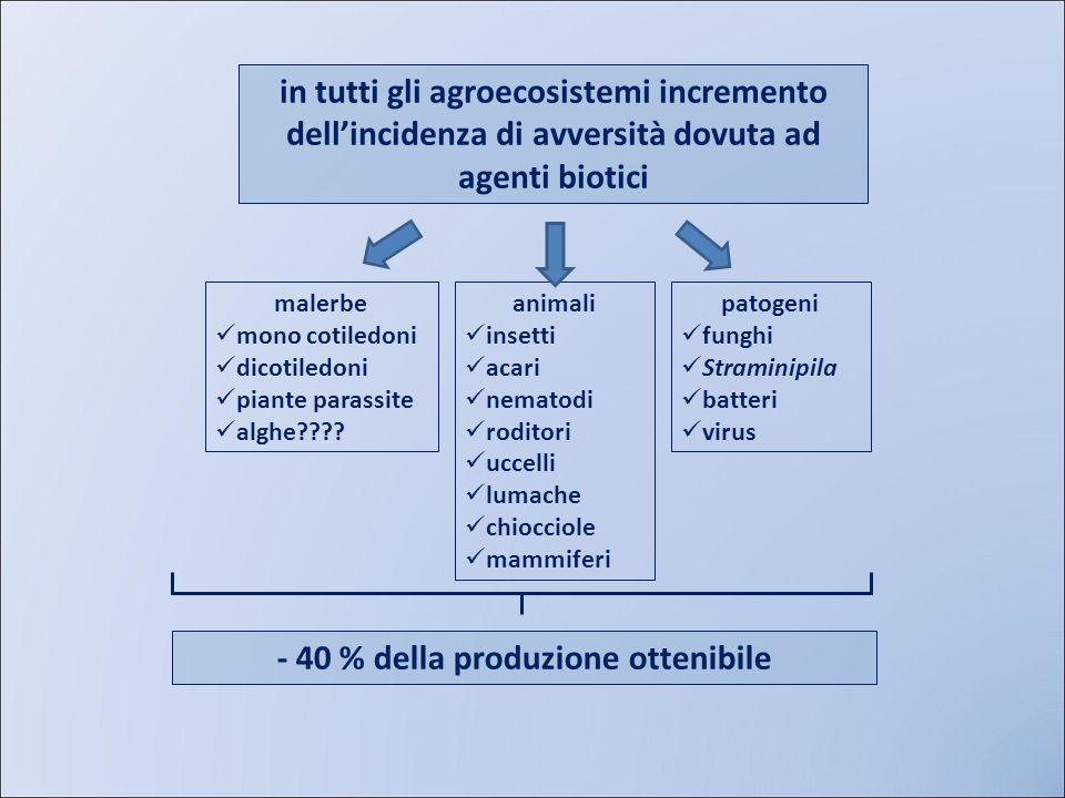 - 40 % della produzione ottenibile