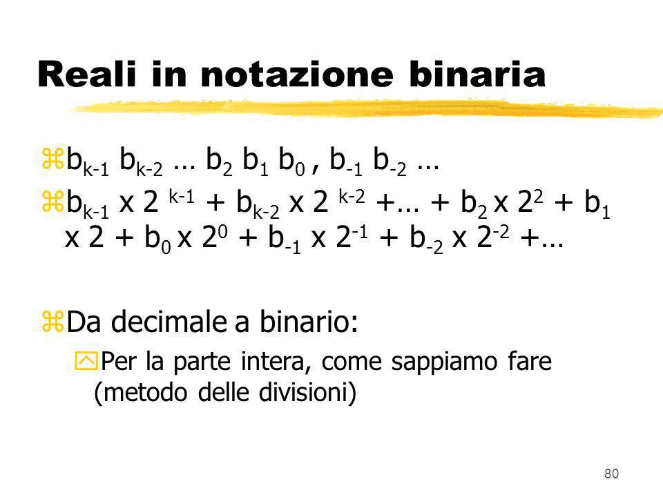 Reali in notazione binaria