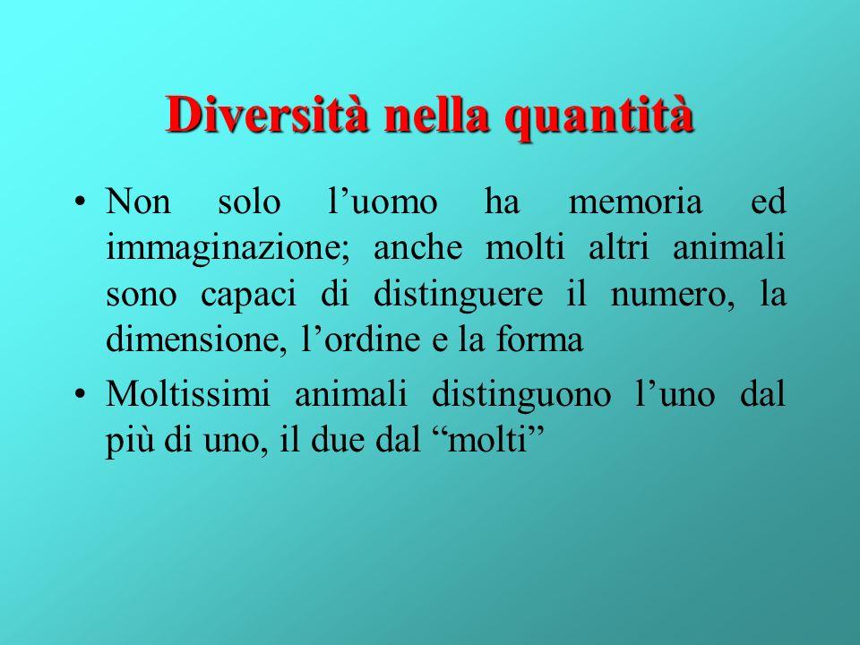 Diversità nella quantità
