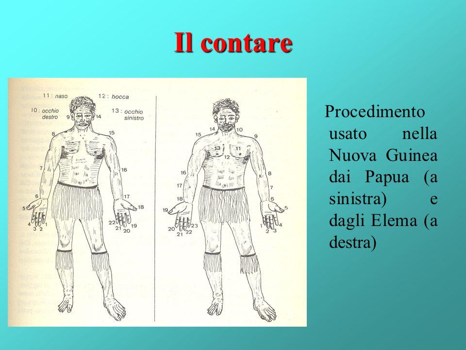 Il contare Procedimento usato nella Nuova Guinea dai Papua (a sinistra) e dagli Elema (a destra)
