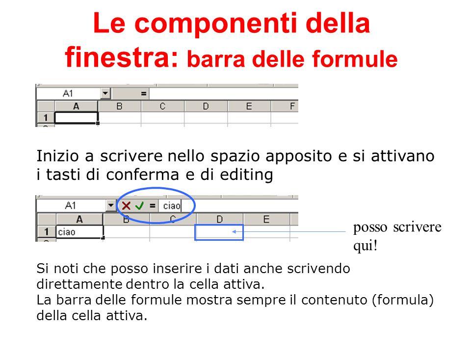 Le componenti della finestra: barra delle formule