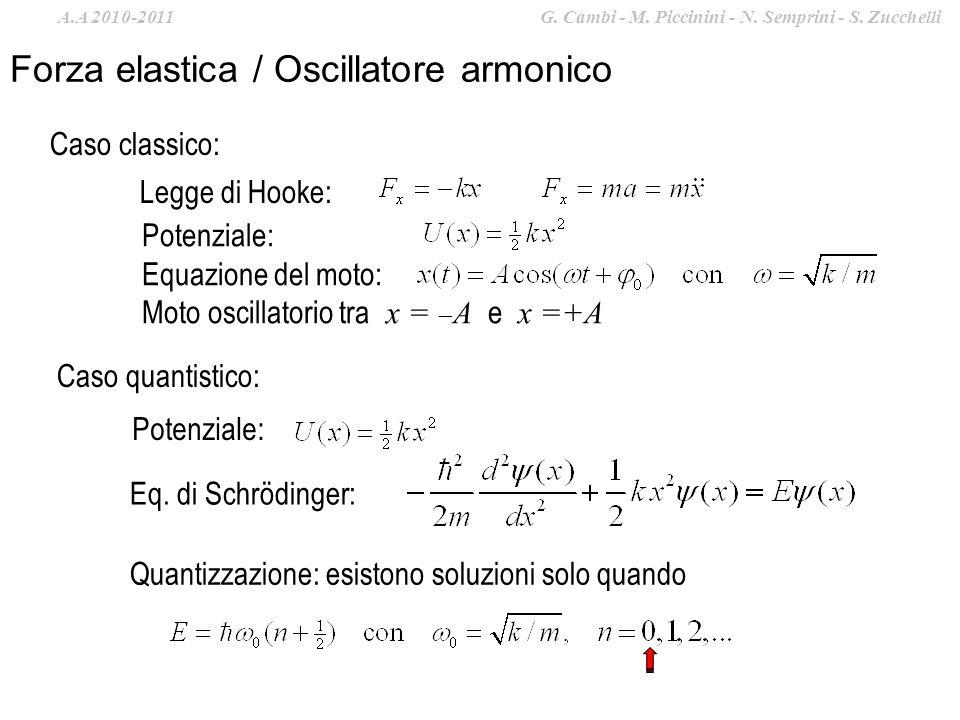 Forza elastica / Oscillatore armonico