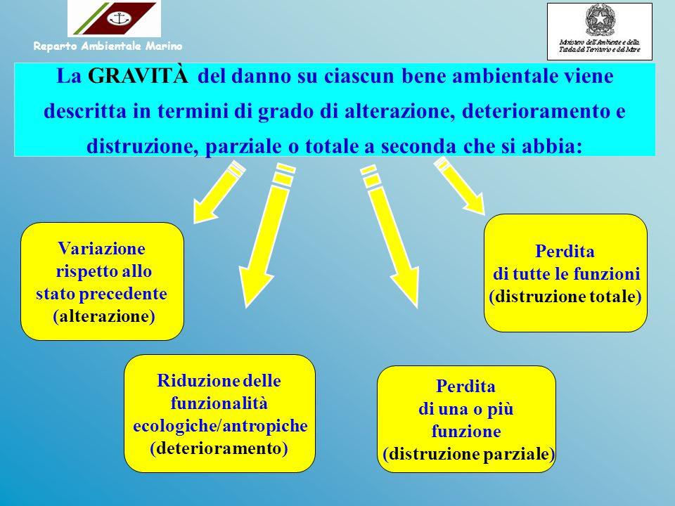 Reparto Ambientale Marino ecologiche/antropiche (distruzione parziale)